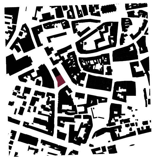 110_Schwarzplan ohne Linien