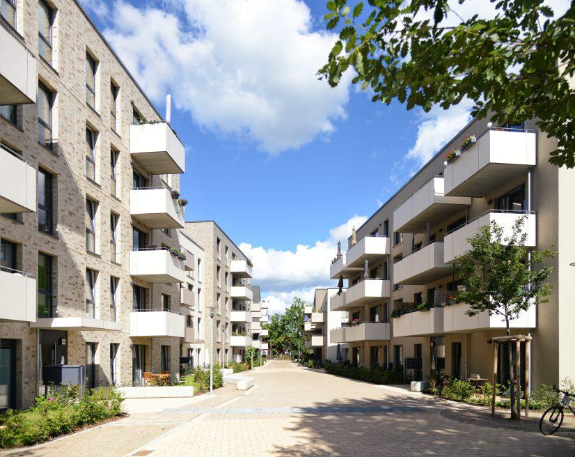 Lockstedter Höhe | Hamburg | 2020